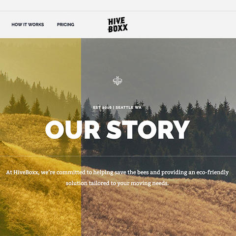 HiveBoxx Our Story